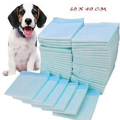Large Puppy Training Pads Toilet Mats Pet Dog Cat Puppy 20 40 80 ,100 60X40 Cm