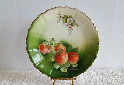 Antique 1798 Hand Painted Porcelain Bavarian Plate Made In Germany Apple  Blosom