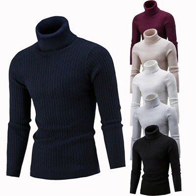 Mens Turtleneck Sweater Pullover Tops Long Sleeve Slim Knitted Sweater Gifts US