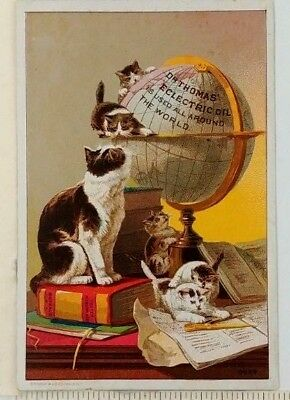 1890s Dr Thomas Eclectric Oil Victorian Trade Card Globe Kittens Quack Medicine