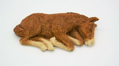 Sandicast Figurine Sculpture Horse Foal Baby Lying Down Sleeping Small Size W03