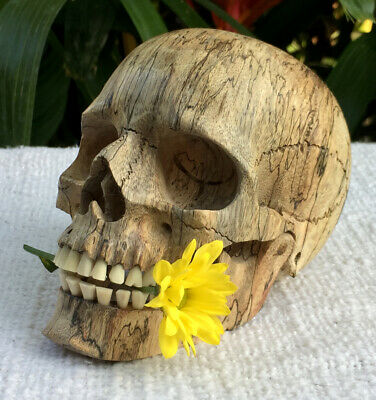 Human Skull Hand Carved Sculpture Wood Realistic flexible Jaws FIgures Decor New