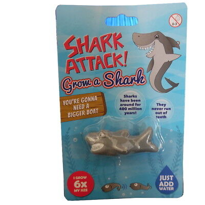 GROW YOUR OWN SHARK GIRLS BOYS TOY NOVELTY GIFT PRIZE BIRTHDAY PARTY BAG FILLER