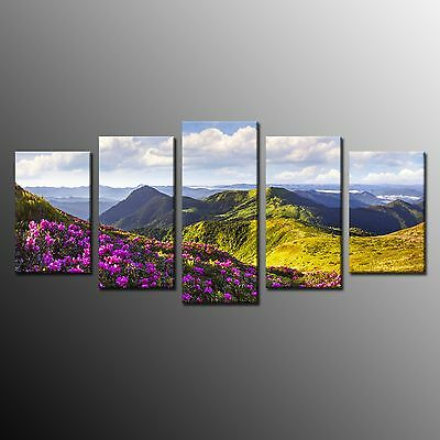 FRAMED Green Mountain Meadow With Flowers Painting Print On Canvas Wall Art 5pcs