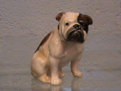 Rare Royal Doulton Seated Bulldog K1Y