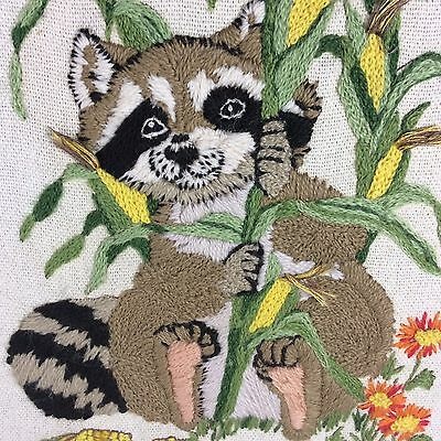 Vintage Racoon In Corn Field Hand Embroidered Picture Framed Colorful Flowers