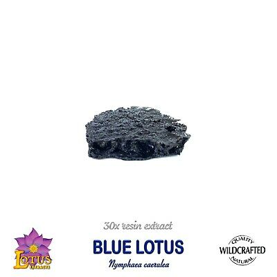 BLUE LOTUS Nymphaea caerulea  10 grams Premium Resin Extract VERY RELAXING