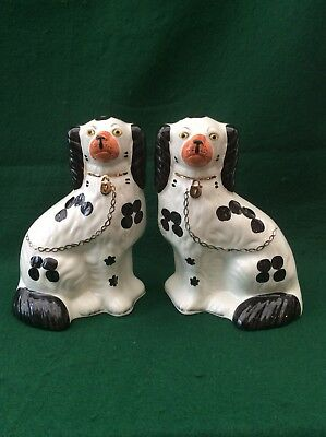 Pair of Staffordshire Arthur Wood Spaniels (8.5 inches)