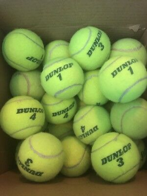 1 5 10 25 or 50 used DUNLOP TENNIS BALLS in good condition - REUSE or DOG TOYS