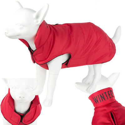 Red Dog Coat Size Medium From Pets At Home 4 20 Picclick Uk