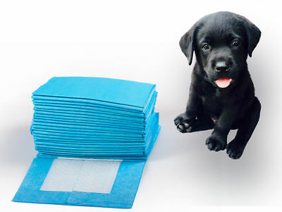 5 X DOG PUPPY PET HOUSEBREAKING 23x23 WEE WEE PEE TRAINING POTTY PADS UNDERPADS