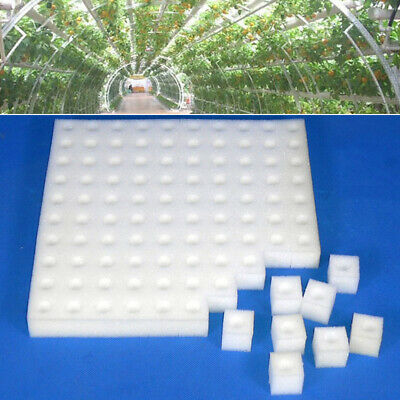 100x Sponge Cubes Hydroponic Grow Media Soilless Cultivation System Garden Tool