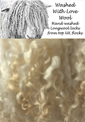 Curly Teeswater Wool Locks. Natural. 20G Wet/needle Felting. Spinning. Crafts.