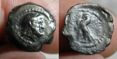 60 Ptolemaic Kingdom Of Egypt - Ptolemy Viii Euergetes 145-116 B.c.