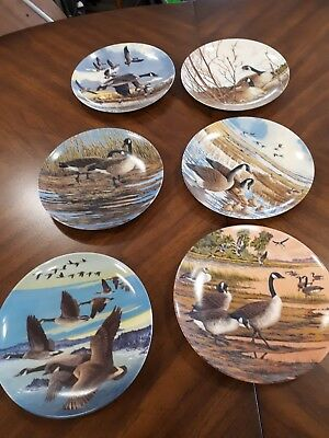 Wings upon the wind  collectors plates   set of 6