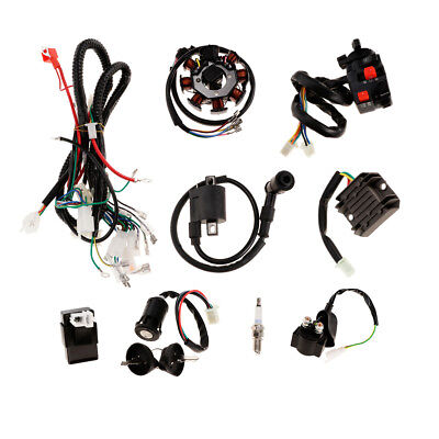 Outstanding Complete Electrics Atv Quad 200Cc 250Cc Cdi Wire Harness Zongshen Wiring Cloud Staixuggs Outletorg