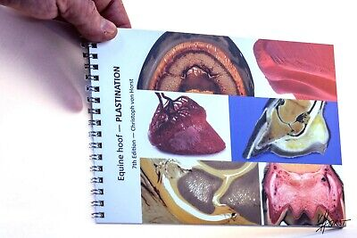 Equine Hoof Plastination image booklet of the horse foot anatomy and pathology