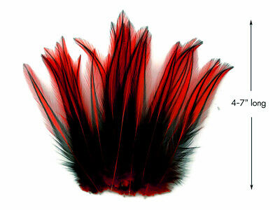 10 Pieces - Red Dyed BLW Laced Long Rooster Cape Whiting Farms Feathers Fly Fish