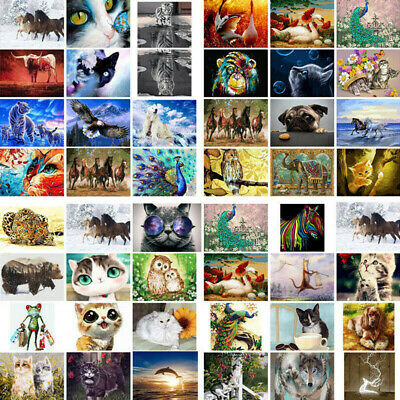 Animals DIY Paint By Numbers Kit Oil Painting On Canvas Home Wall Decor Cat Lion