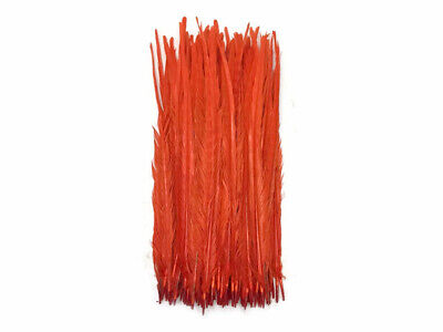"""10 Pieces - 20-22"""" Orange Bleached and Dyed Long Ringneck Pheasant Tail Feathers"""