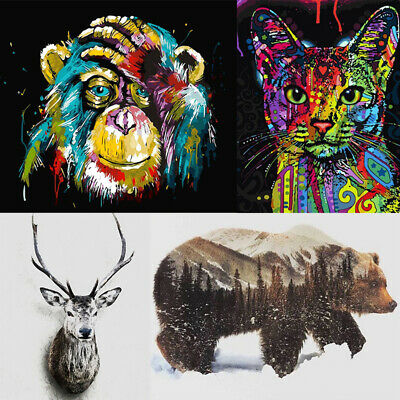 Animal Creative DIY Paint By Number Kit Digital Oil Painting Home Art Wall Decor