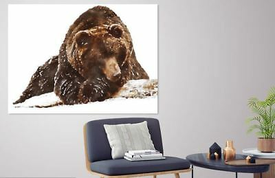 ARTISTIC WATERCOLOR BEAR SCENERY high quality wall Canvas wall art home decor