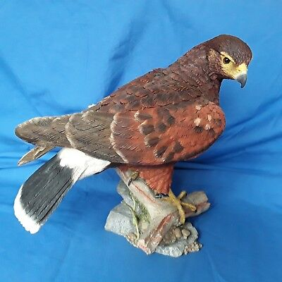 Country Artists Harris Hawk , Large Model Bird comes with Box .