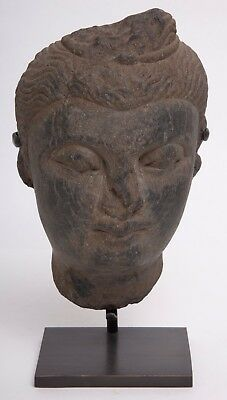 Ancient Gandharan Schist Stone Head of a Bodhisattva Circa 2nd to 4th Century AD