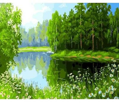 Paint By Numbers Kit Field of Flowers Lake Snowy Hills 40CMx50CM Canvas