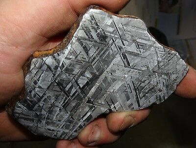 Beautiful Large 191 Gm Etched Gibeon Meteorite Slice From Namibia