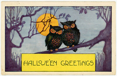 1920 Halloween Postcard Whitney Owls on a Tree Branch Full Moon Corner Damage#33