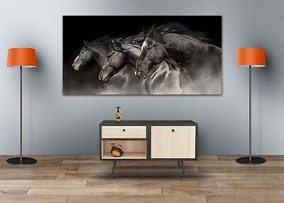 BLACK RUNNING HORSES  SCENERY WALL ARTS high quality Canvas home decor