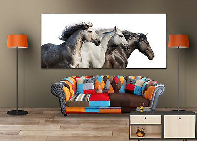 BLACK & WHITE RUNNING HORSES  SCENERY WALL ARTS high quality Canvas home decor