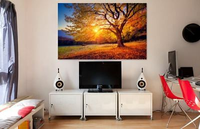 BEAUTIFUL & COLORFUL LANDSCAPE SCENERY WALL ARTS high quality Canvas home decor