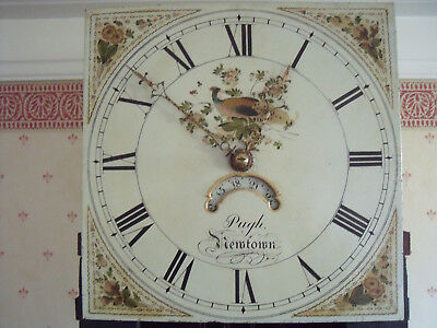 Antique 30hr Painted Dial Long case Grandfather Clock