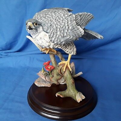 Country Artists Peregrine Falcon with Poppie,Large Model Bird ,Comes with Box .
