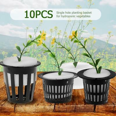 10pcs Hydroponic Vegetable Planting Basket Flower Seed Soilless Cultivation Tray