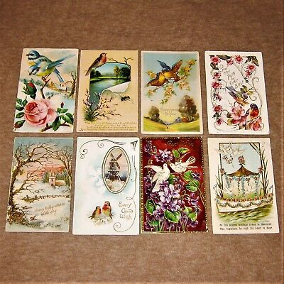 Lot of 8 antique embossed postcards ~ BEST WISHES ~ Beautiful Birds ~ posted