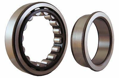 SKF NJ203ECP/C4 Roller Bearing 17mm x 40mm x 12mm POly Cage