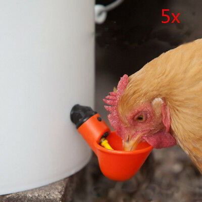 5 Pack Poultry Water Drinking Cups- Chicken Hen Plastic Automatic Drinker US