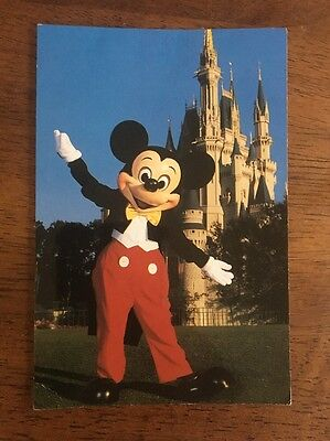 1980s DISNEY WORLD~MICKEY MOUSE & CINDERELLA'S CASTLE~UNUSED POSTCARD