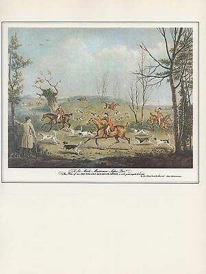 "1974 Vintage Fox Jagd "" Hounds Breaking Cover "" Farbe Kunstdruck Lithographie"