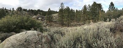 1.4 Acre Vacant Land in the Tehachapi Mountains. Beautiful with Trees and Vista