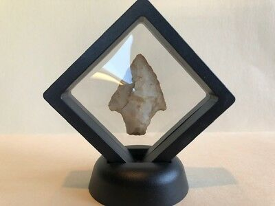 Authentic Arrowheads Found in Arkansas #60 Display Case Included