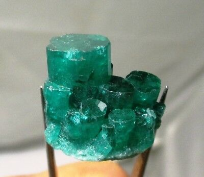 36.9 ct Chatham emerald cluster - lab grown actual emerald cluster - rough