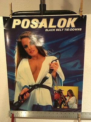 Posalok Motorcycle Tie-Downs Poster