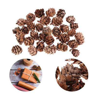 120pcs Vintage Natural Pine Cones Pinecone for Christmas Ornament Craft 20mm