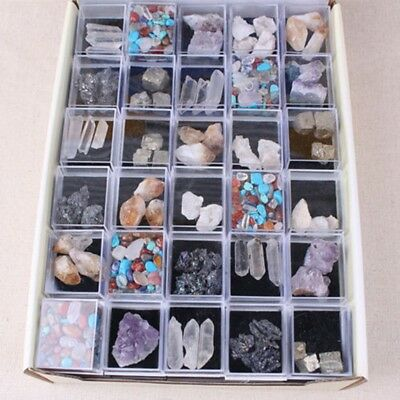 Rock Collection Mixed Crystal Natural Mineral Ore Specimens Gemstones with Box