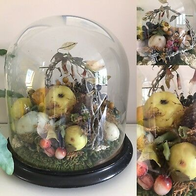 Victorian Glass Dome Of Wax Fruit