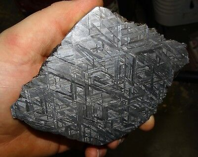 Amazing 568 Gm. Muonionalusta Etched Meteorite Slice